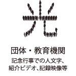 icon_v007
